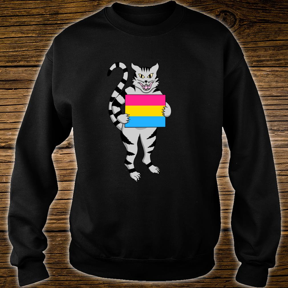 Pansexual Flag Cat Kitty Pan Pride LGBT Nonbinary Pronouns Shirt sweater