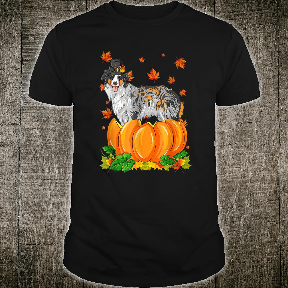 Thanksgiving day Australian Shepherd dog Costume Pumpkin Shirt