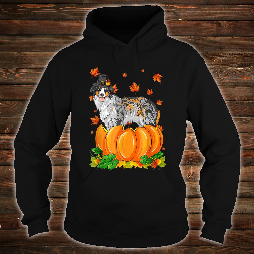 Thanksgiving day Australian Shepherd dog Costume Pumpkin Shirt hoodie