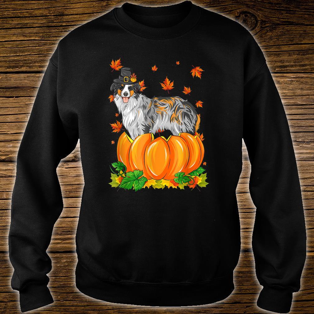 Thanksgiving day Australian Shepherd dog Costume Pumpkin Shirt sweater